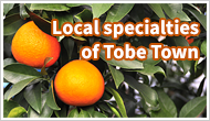 Local specialties of Tobe Town