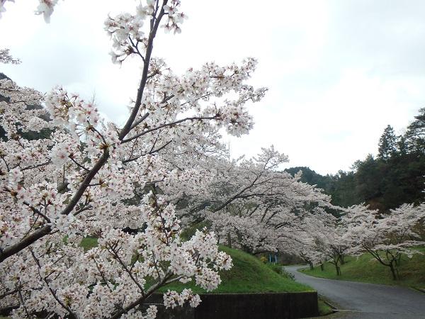 4.6銚子ダム2.JPG