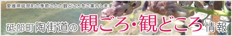 spot_bnr.jpg